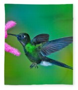 Tourmaline Sunangel Fleece Blanket