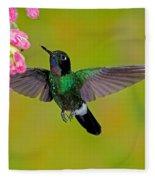 Tourmaline Sunangel Hummingbird Fleece Blanket