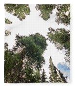 Towering Pine Trees Fleece Blanket