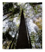 Towering Timber Fleece Blanket