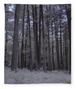 Towering Trees Over Ferns In Blue Fleece Blanket