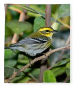 Townsends Warbler In Tree Fleece Blanket