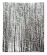 C And O Towpath Blizzard Fleece Blanket