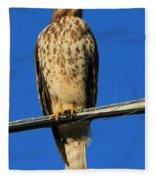 Traffic Hawk Fleece Blanket