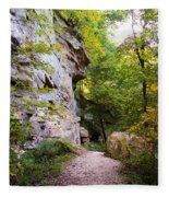 Trail Beside The Cliff Wildcat Den State Park Fleece Blanket