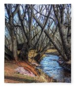 Trail By Fountain Creek Winter Fleece Blanket