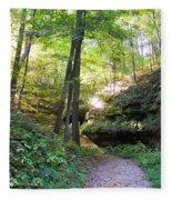 Trail To Devil's Punch Bowl Wildcat Den Fleece Blanket