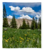 Trappers Lake Meadow Fleece Blanket