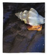 Traveling At A Snail's Pace Fleece Blanket