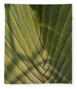 Traveller's Palm Patterns Dthb1543 Fleece Blanket