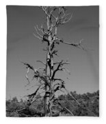Tree Fleece Blanket