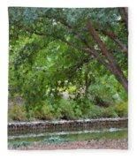 Tree At Norfolk Botanical Garden 4 Fleece Blanket