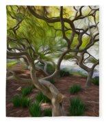 Tree At Norfolk Botanical Garden Fleece Blanket