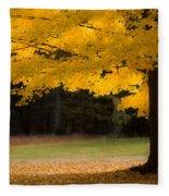 Tree Canopy Glowing In The Morning Sun Fleece Blanket