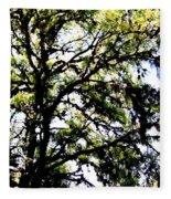 Tree In Blue Ridge Mountains Fleece Blanket
