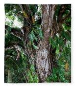 Tree In Kauai Fleece Blanket