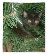 Tree Kitten Fleece Blanket