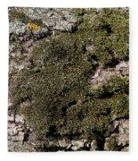 Tree Moss Fleece Blanket