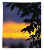 Tree Silhouette Over Sunset Fleece Blanket
