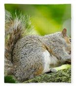 Tree Squirrel Fleece Blanket