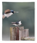 Tree Swallows Mating 1 Fleece Blanket