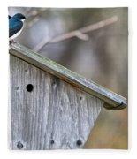 Tree Swallows On Birdhouse Fleece Blanket