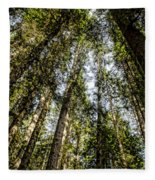 Tree Tops Fleece Blanket