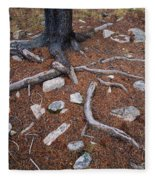 Tree Trunk Roots And Rocks Fleece Blanket