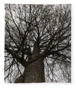 Tree Web Fleece Blanket