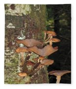 Tree With A Fungus Fleece Blanket