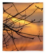 Trees Ablaze In Autumn Fleece Blanket