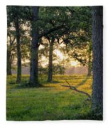 Trees At Sunrise Fleece Blanket