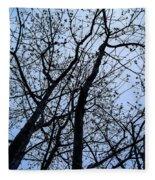 Trees From Below Fleece Blanket