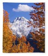 Trees In Autumn, Colorado, Usa Fleece Blanket