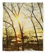 Trees In Marsh, Maine, Usa Fleece Blanket