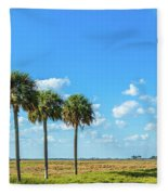 Trees On Landscape, Florida, Usa Fleece Blanket