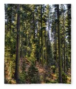 Trees With Moss In The Forest Fleece Blanket