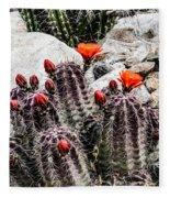 Trichocereus Cactus Flowers Fleece Blanket
