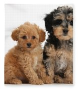 Tricolor Merle Daxie-doodle And Red Toy Fleece Blanket