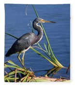 Tricolored Heron At The Pond Fleece Blanket