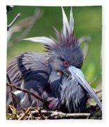 Tricolored Heron Female Incubating Eggs Fleece Blanket