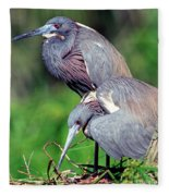Tricolored Heron Male And Female At Nest Fleece Blanket