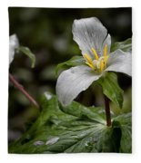 Trillium - After The Rain Fleece Blanket
