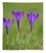 Trio In Violet Fleece Blanket