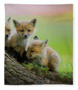 Trio Of Fox Kits Fleece Blanket