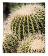 Triple Cactus Fleece Blanket