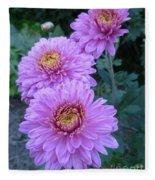 Triplets Of Purple Mums Fleece Blanket
