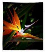 Tropical Bloom Fleece Blanket
