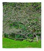 Tropical Entanglement Fleece Blanket