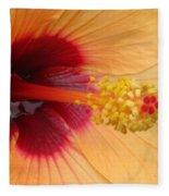 Tropical Hibiscus - Aruba Wind 01 Fleece Blanket